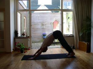 Yoga - Arien van Erkelens